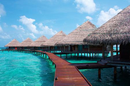 Maldive Estate 2017 da 1329,00 €